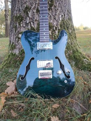 Harley Benton guitars - Thomann Music  For reals ??? | Page