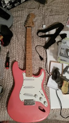 Guitar finishing with polycrylic question | Squier-Talk Forum