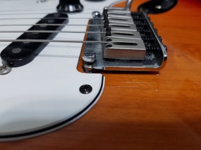 Do you want a floating trem  ? | Squier-Talk Forum